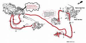 Skunk2 Intake  Throttle Body Install