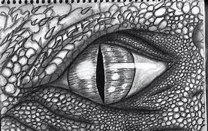 Cool Dragon Eye Drawings In Pencil | www.pixshark.com ...