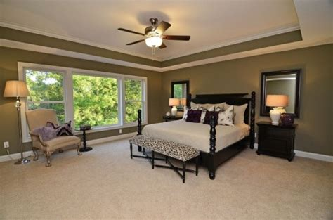 Tray Ceilings Paint Ideas - 16 best tray ceilings images on
