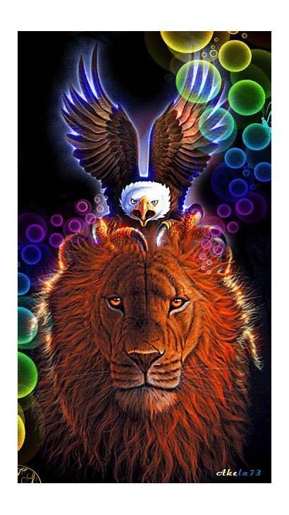 Lion Gifs Animal Eagle Animals Spirit Animated