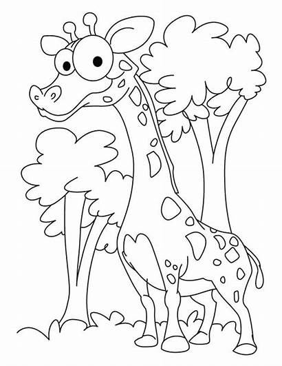 Coloring Funny Giraffe Printable