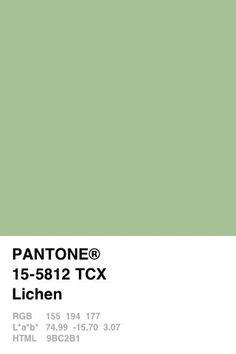 pantone   cores