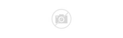 Company Swot Technology Pactsafe Timeline Tech Business