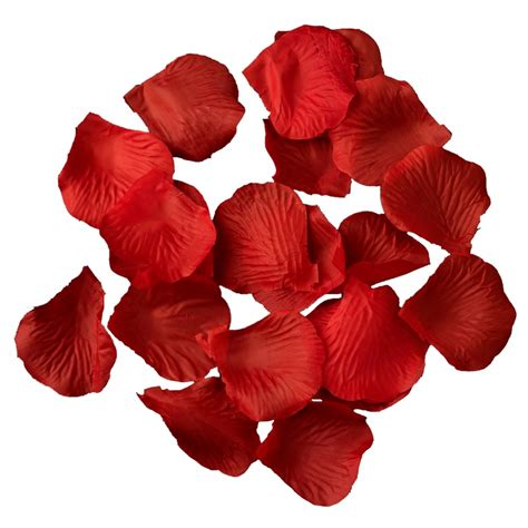 bright red rose petals color   petals  bag