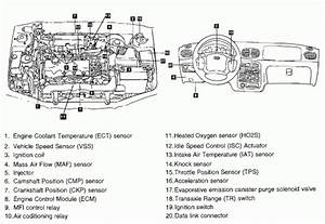 2009 Hyundai Sonata Engine Diagram