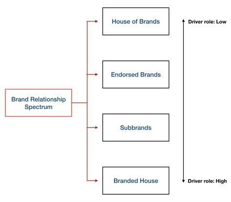 brand managers  manage complex brands brand