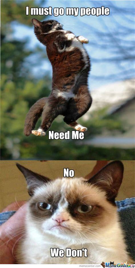 Grumpy Cat Meme Clean - the gallery for gt clean grumpy cat memes