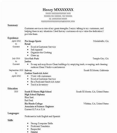 Summary Of Qualifications For Retail by Professional Resume Summary Exles Powerful Summary Of