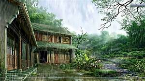 Rainy Day And Nature Home Wallpaper