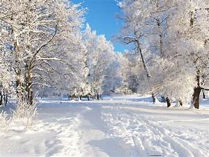 Winter Backgrounds Download Free for Desktop | PixelsTalk.Net  Desktop