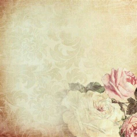 pink roses paper background background vintage