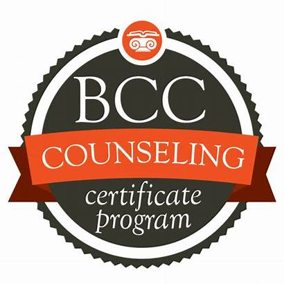 Counseling Biblical Certificate Courses Training Center Train