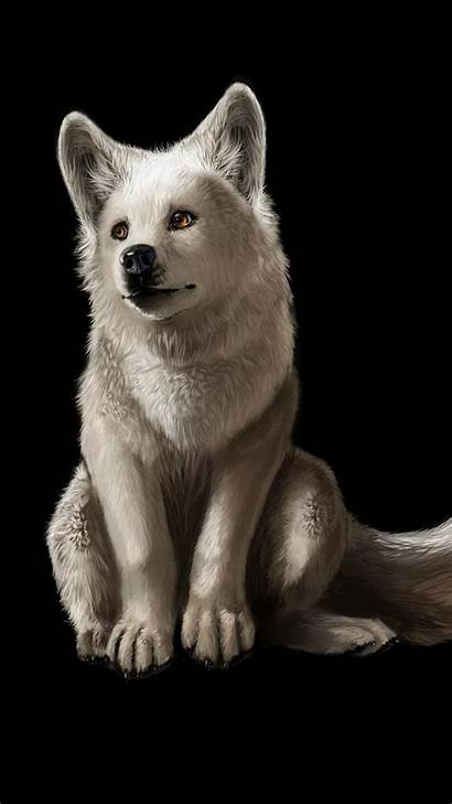Wolf Cool Cell Phones Resolution Wallpapers Phone