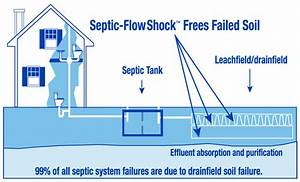 Septic Tank Treatment Guide