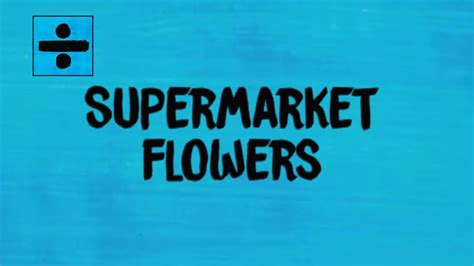 Supermarket Flowers (lyrics Review And Song
