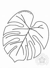 Tropical Leaf Leaves Coloring Template Printable Templates Flowers Branch sketch template