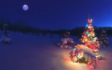 download free windows 7 holiday lights theme