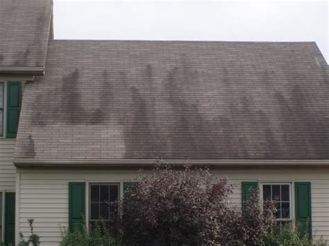 Erie,pa Roof Stain Cleaning Mississippi Valley Roofing Flat Roof Carport Kits Red Inn Charlottesville Virginia Cost Of A St Paul Free Repair For Seniors Springfield Mo Albany Ny