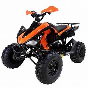 Tao Tao 150cc Sportmax Adult Atv