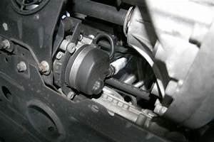 2003 Mini Cooper Transmission Diagram  Mini Cooper  Wiring