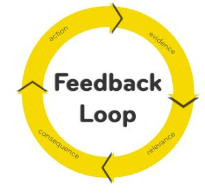 facebook  feedback loops meet rypple wired