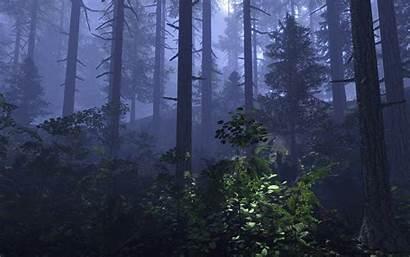 Forest Petrograd Crysis Mod Rss Report Moddb