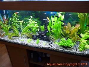 Photo D U00e9co Aquarium Fait Maison