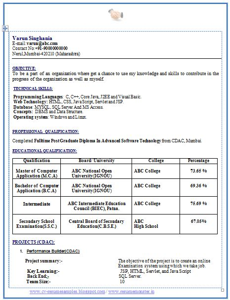 Curriculum Vitae For Freshers by Professional Curriculum Vitae Resume Template Sle