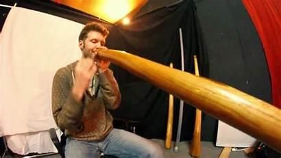 Didgeridoo Mythe Zalem Terre Session