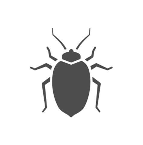Bed Bugs    Learn  Signs  Call  Pest