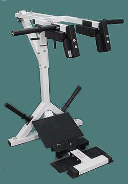 tds calf squat system  bench presscom tds