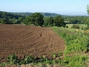 Tilled field, Spye Park © Derek Harper :: Geograph Britain ...