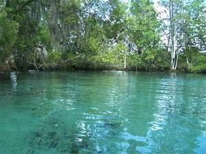 19 Incredible Freshwater Springs In Florida