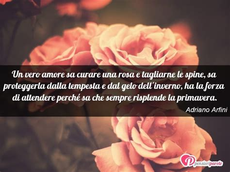 Testo Con Una Rosa by Immagine Con Frase Di Adriano Arfini Un Vero