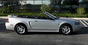 Silver 2004 Ford Mustang Convertible - MustangAttitude.com Photo Detail