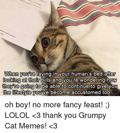 Fancy Feast Meme - 25 best memes about grumpy cat memes grumpy cat memes