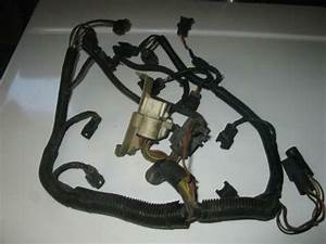 1993 Mustang Wiring Harness