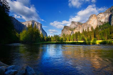 5 motivating reasons to visit yosemite the redwoods in