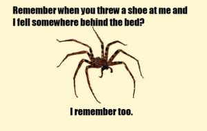 Scary Spider Meme - arachnophobia is it any wonder hate is a synonym for venom alienredqueen