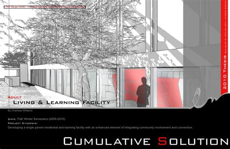 2010 Thesis Project