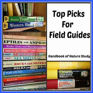 Building A Library Of Field Guides For Your Reference