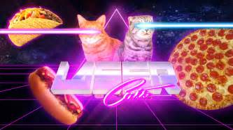 cat laser laser cats wallpaper meh ro