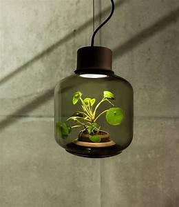 Lampen Für Pflanzen : lampen f r pflanzen mit design photosynthese lampe ~ A.2002-acura-tl-radio.info Haus und Dekorationen