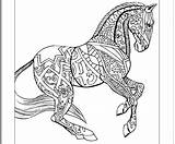 Coloring Horse Pages Hard Animal Horses Colouring Printable Zentangle Sheets Books Draft Animals Getcolorings Printouts Getdrawings Template Uploaded User sketch template