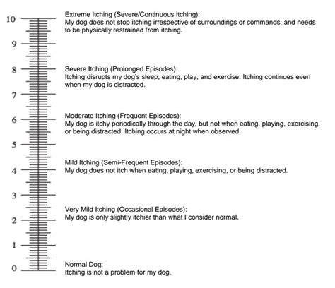 vas scale itching in dogs pruritus visual analog scale canine