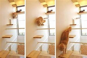 Cats House Japan Living Impressive