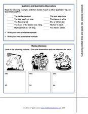 Qualitative And Quantitative Observations 7th  9th Grade Worksheet  Lesson Planet