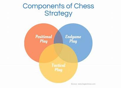 Chess Strategy Components Diagram Venn Different Illustrates