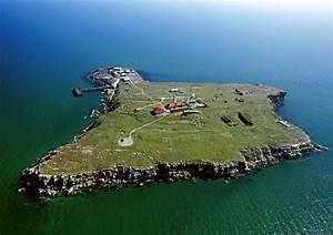 Snake island Ukraine
