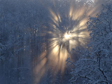 winter snow sun latvia wallpaper